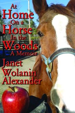 Horse in Woods 100dpi (1)